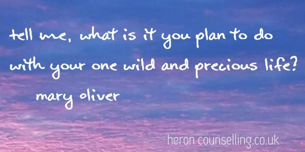 Heron Counselling - Precious Life Mary Oliver (2)